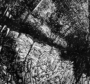 A New Wood Engraving