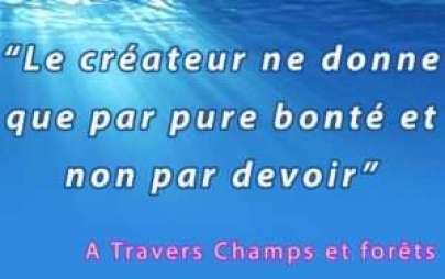 Phrase champs 1