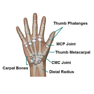 pain in thumb