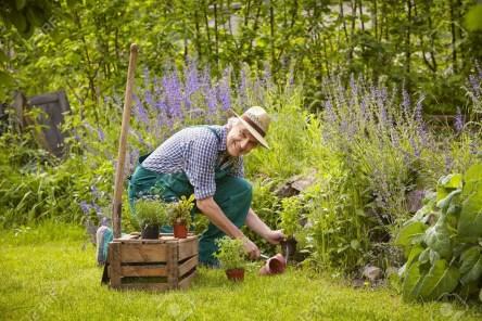 kneeling man in pain garden