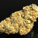 Meat Breath - Friday Sale $20 off 1 oz, $10 off 1/2 oz