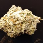 JACK FROST 23% THC - Special Price $125 oz!