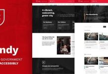Cindy - Accessible Local Government WordPress Theme