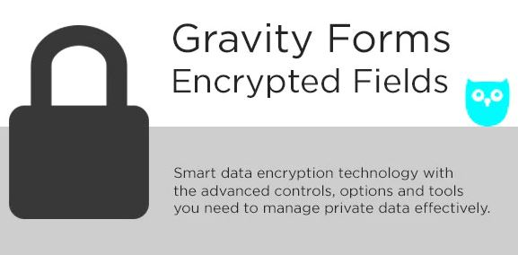 Gravity Forms Encrypted Fields