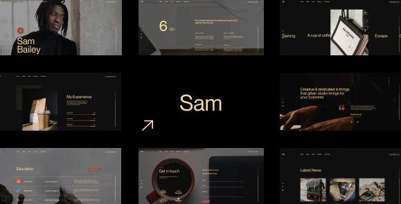 Sam Bailey – Personal CV/Resume WordPress Theme