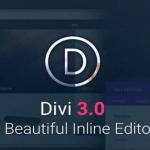 Elegant Theme Divi WordPress Theme