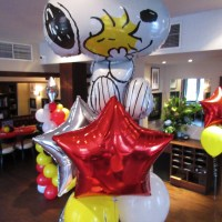 themed-balloons-gallery-7