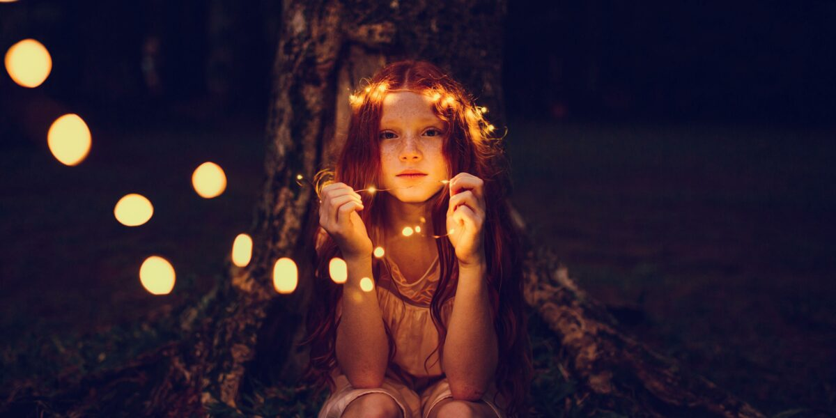 adorable-beautiful-blur-573298-forest