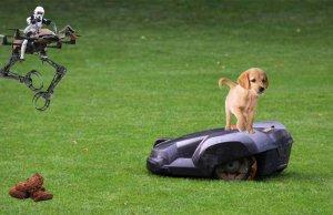 Drohne löst Hundekot Problem