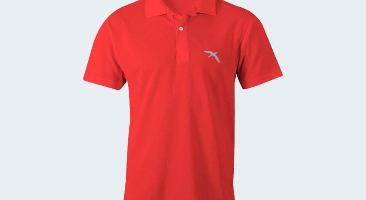 polo_T_shirt