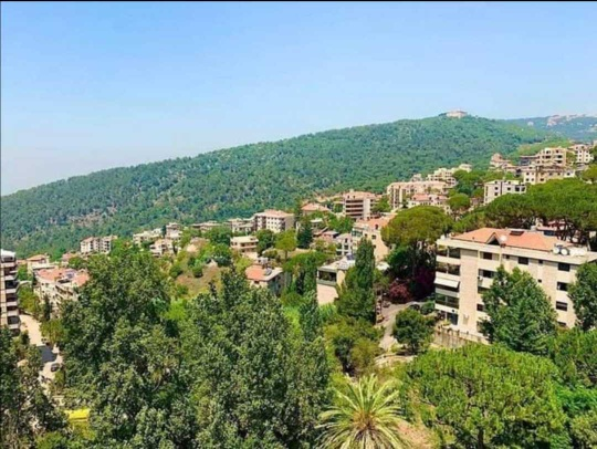Apartment  for sale in Bromana