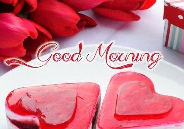 Good Morning 8