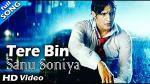 Tere Bin Sanu Soniya Lyrics