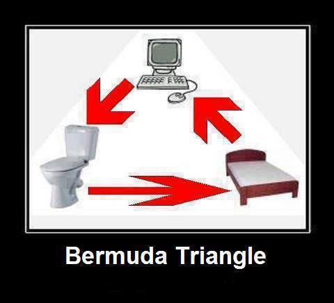 Software Engineer Bermuda Triangle - Funny Pic