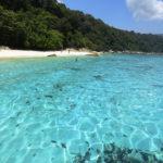 Malásia | Guia e Dicas de Viagem