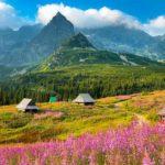 Polónia – Guia de Viagem e Dicas Úteis sobre a Polónia