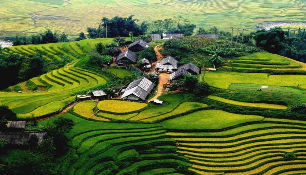 Guia da Viagem Vietname