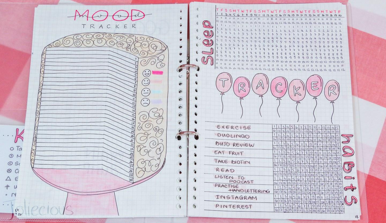 plan with me november bullet journal setup