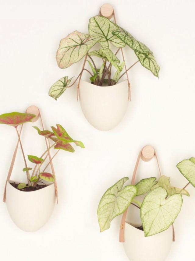 10 Ides Dco Pour Vos Plantes Joli Place