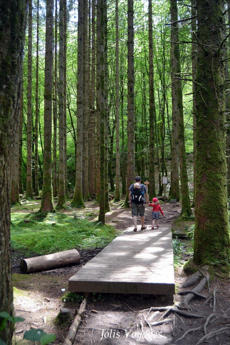 Parc Régional du Morvan