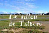 Sillon de Talbert