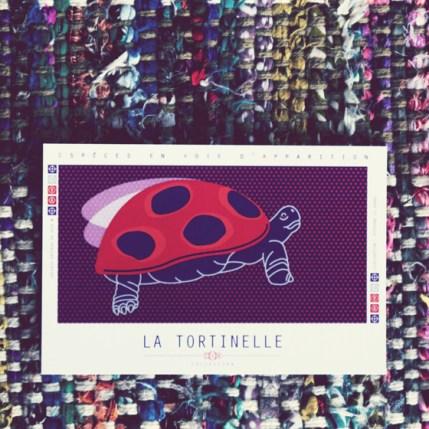 EVA-carte-postale-tortinelle