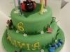 Olivia' Birthday Cake
