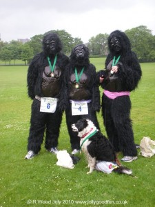 Gorillas at 'Pants In The Park' 2010