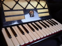 Parrot accordion 30 key#6
