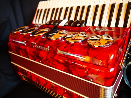For sale Parrot piano accordion with mutes – £450