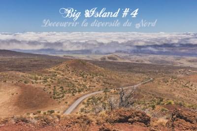 Big Island #4 Découvrir la diversité des paysages du Nord
