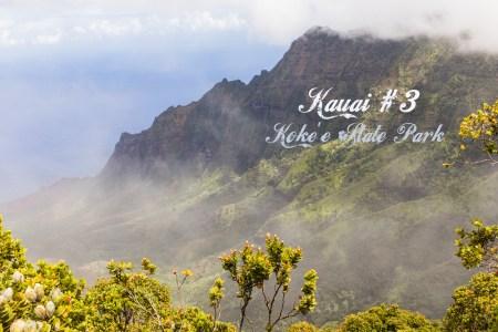 Kauai #3 Koke'e State Park & Pihea Trail