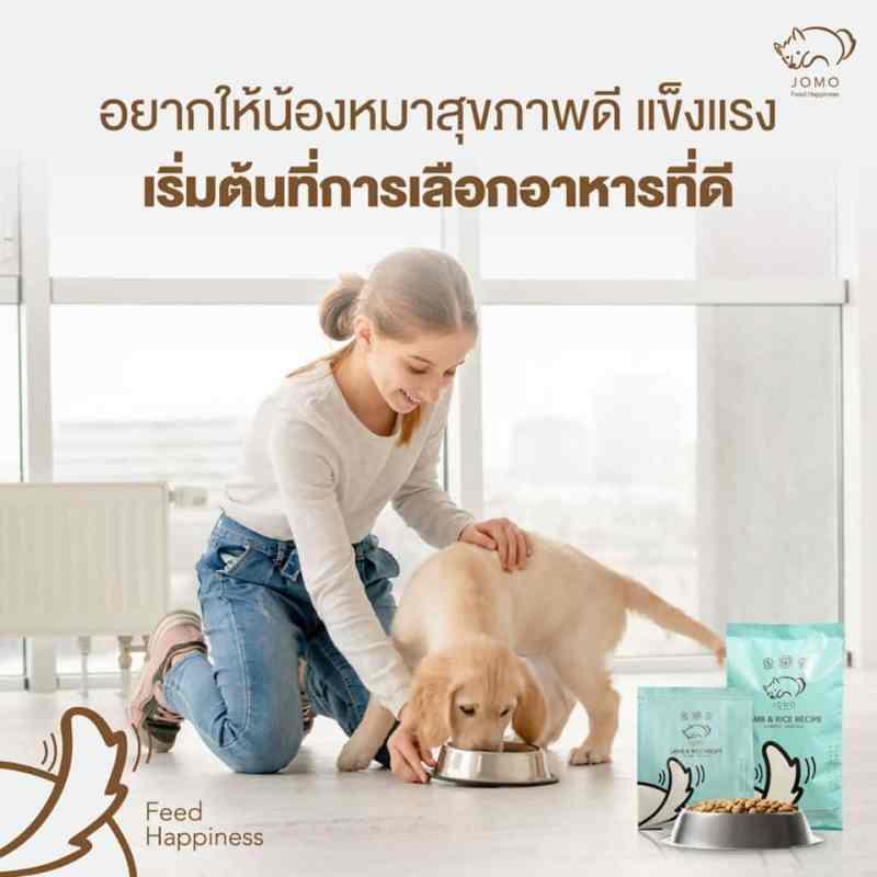 อาหารสุนัขเพื่อสุขภาพที่ดี