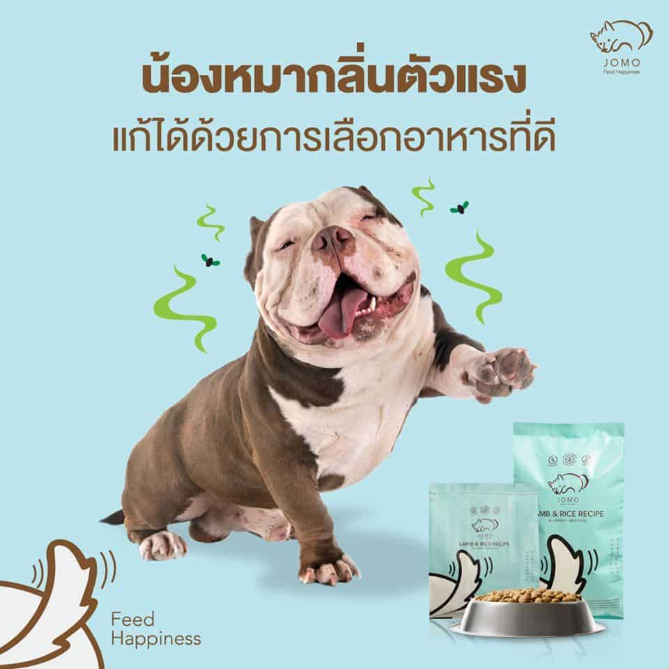 อาหารสุนัขลดกลิ่นตัว