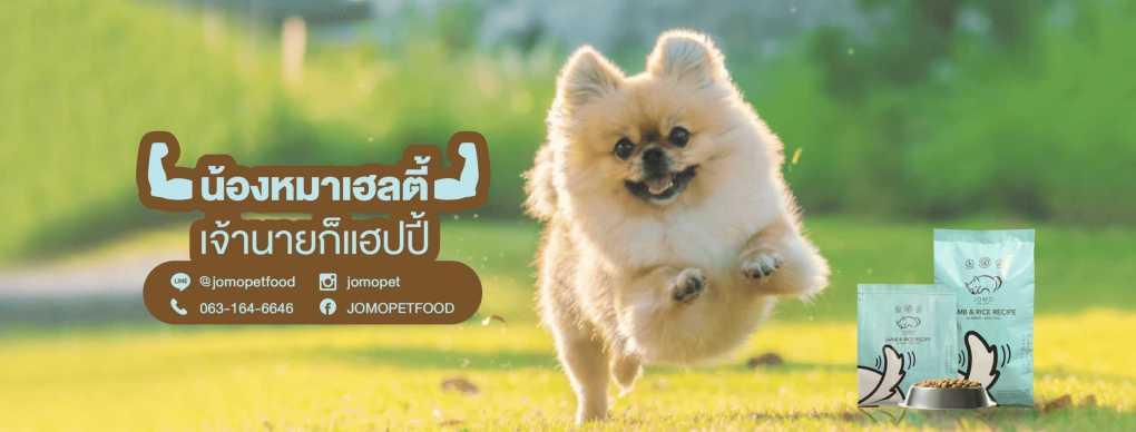 Dog Looking Happy with JOMO Dog Food