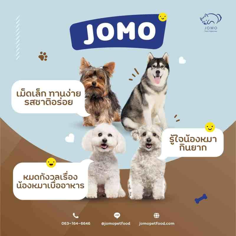 หมาสี่ตัวสี่สายพันธุ์นั่งมองมาที่กล้อง พร้อมกล่องข้อความ อาหารสุนัข JOMO แก้ปัญหาน้องหมากินยาก
