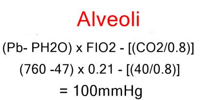 PO2 alveoli
