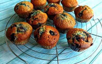 Recette des muffins aux myrtille facile et rapide