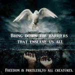 Bring down the barriers that enslave us all freedom is priceless to all creatures