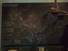Auckland Museum: migration patterns of the indigenous Pacific islanders.