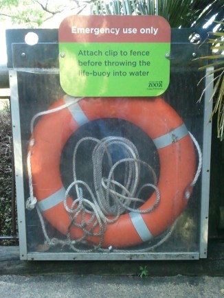 A life preserver near Auckland Zoo's hippo pool. Safety gear is only installed if it has the potential to be used; I wonder how many have gone for inadvertent or intentional swims with such aggressive, gargantuan beasts?