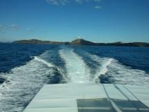 On the way from Tutukaka to the Poor Knights Islands.
