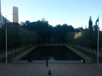 Hyde Park's Lake of Reflections, in front of the ANZAC Memorial. Non-native poplars flank the Lake, symbolizing the French locales in which Australians fought during WWI.
