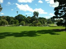 The Domain, 34 hectares of open space just east of the Sydney CBD.