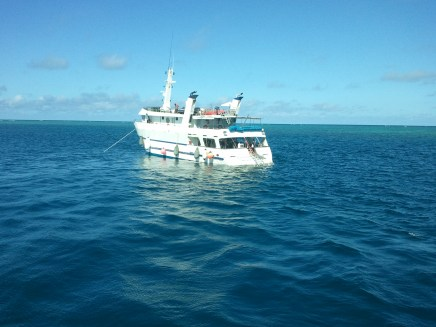 A permanently-moored boat at the Great Barrier reef. Some vacation packages included multi-day stays on these boats.
