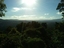 A panoramic view of the rainforest from Skyrail's Red Peak station, at 1788 ft above sea level its highest point. Takeaway? The rainforest (officially, Wet Tropics of Queensland) is massive, at almost 3500 square miles.