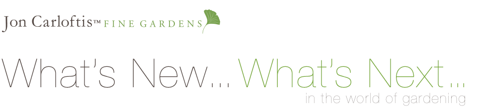 Jon Carloftis Fine Gardens | What's New What's Next
