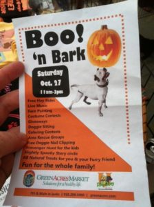 Rescue Dogs Halloween Event