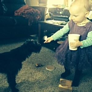 Feeding the puppy