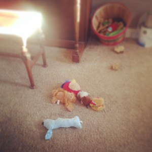 Dog toys on the floor